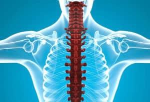 Комплексные курсы лечения позвоночника